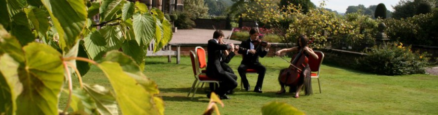The Pachebel String Quartet playing live on the lawn